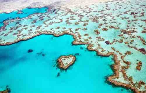 World Heritage Listed Great Barrier Reef -QLD